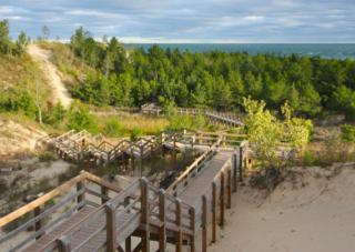 Beach Trails